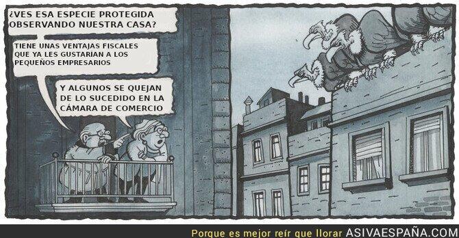 113141 - Fondos buitre, por Miquel Ferreres