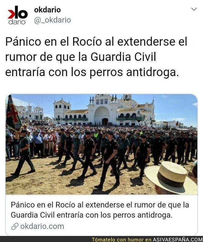 114005 - Pánico en El Rocío
