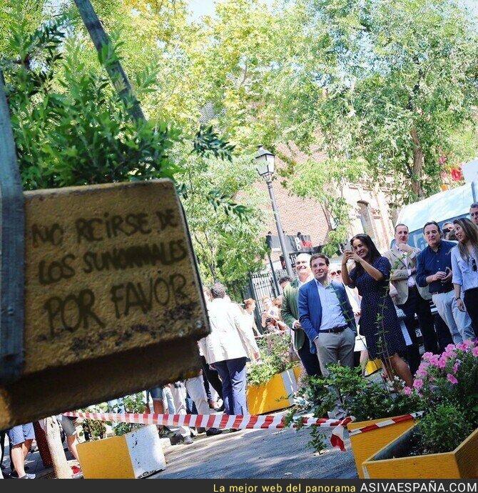 115636 - La alegría por retirar unos maceteros para que los coches contaminen Madrid