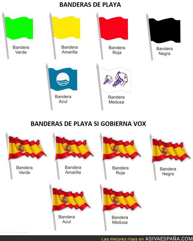 119101 - VOX y las banderas