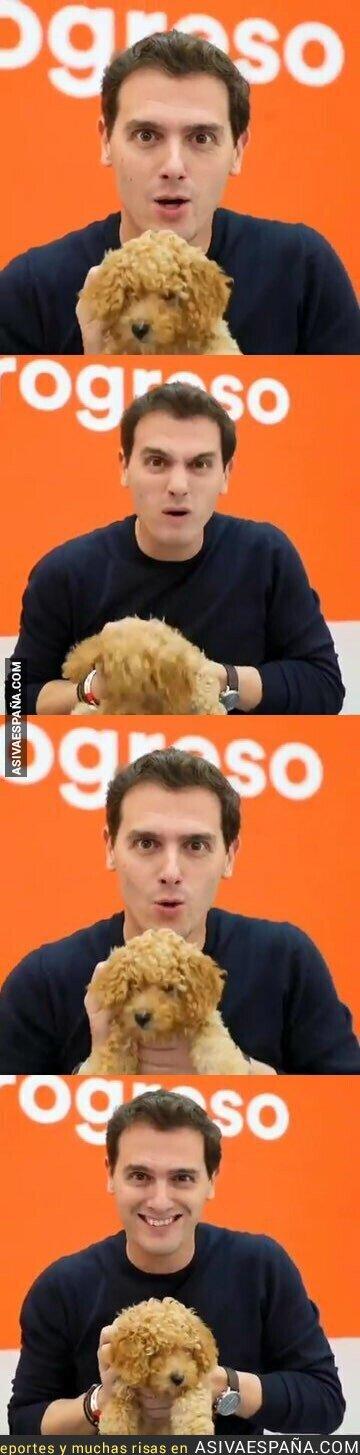 125989 - Solo Albert Rivera era capaz de hacer de hacer un vídeo dando miedo con un perro