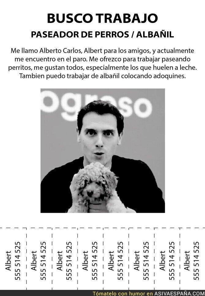 126910 - Albert busca empleo