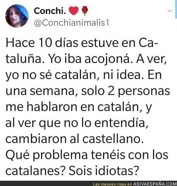 129265 - Catalunya no es como te lo pintan en la televisión