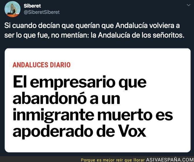 129975 - La Andalucía que quiere VOX