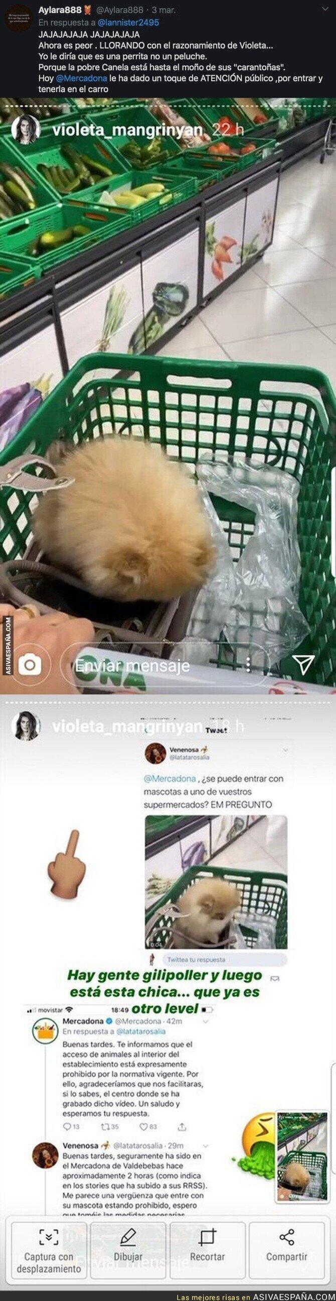 136965 - Violeta Magriñán, la lía en un Mercadona haciendo esto con su perrito y encima se lía a insultos