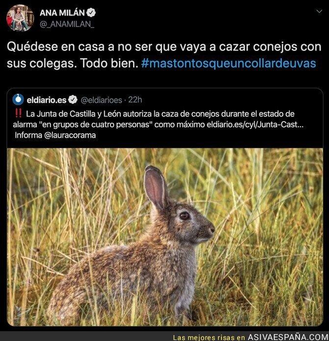 138662 - Cazar conejos en grupos de personas está permitido