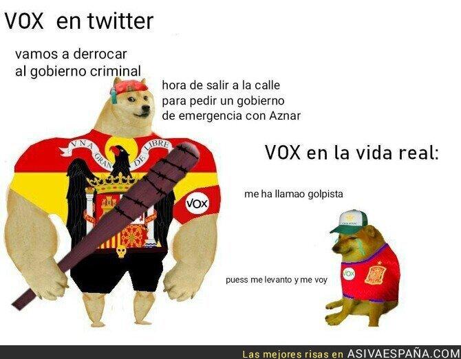 189836 - Vox en Twitter vs. Vox en la vida real