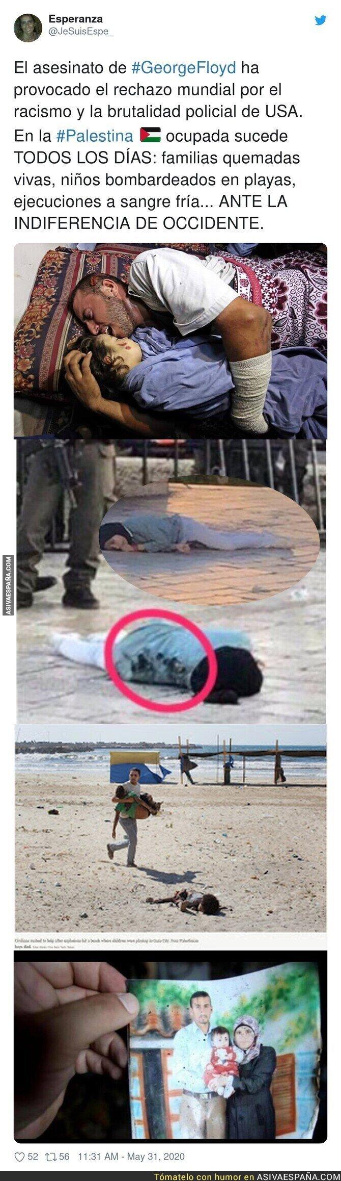 194307 - La triste realidad de Palestina