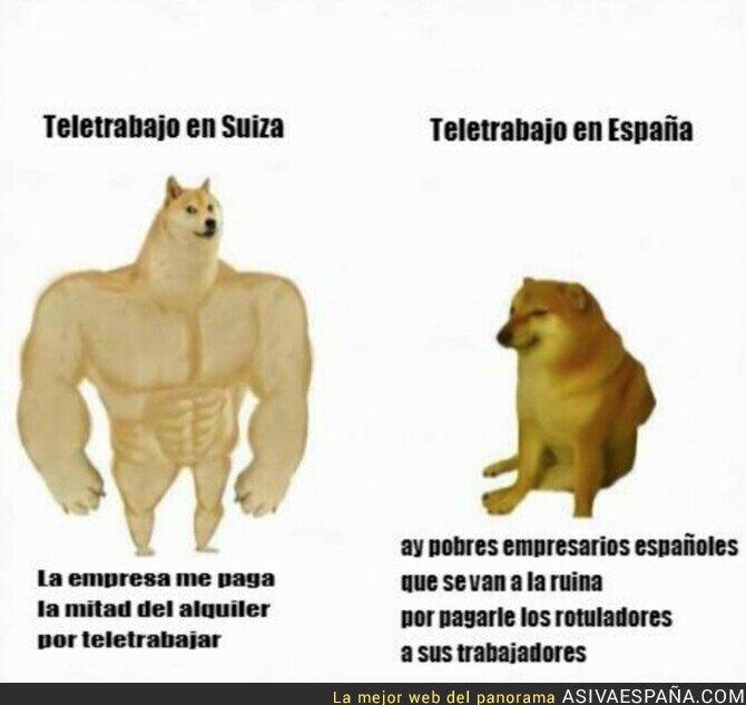 238730 - La diferencia de teletrabajar en España y en otros lados