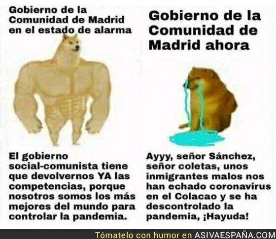 373264 - La situación se ha descontrolado por completo en Madrid