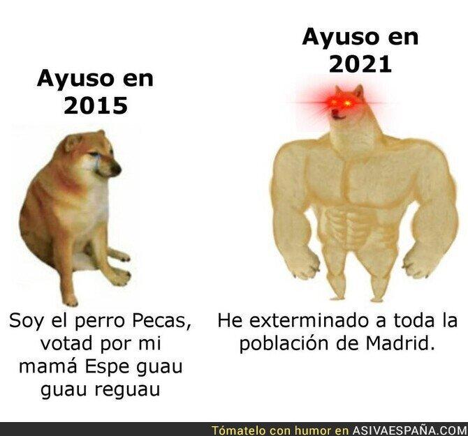 400584 - La gran evolución de Isabel Díaz Ayuso