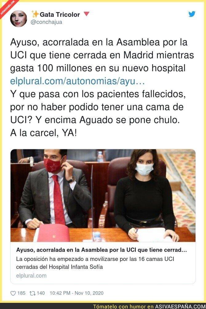 460777 - La absoluta negligencia de Isabel Díaz Ayuso responsable de centenares de muertos