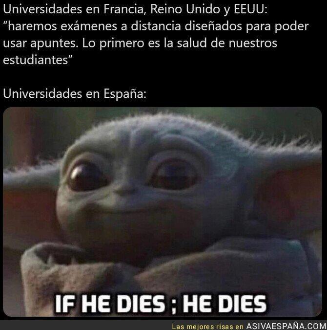 540299 - Mientras tanto las universidades de España...