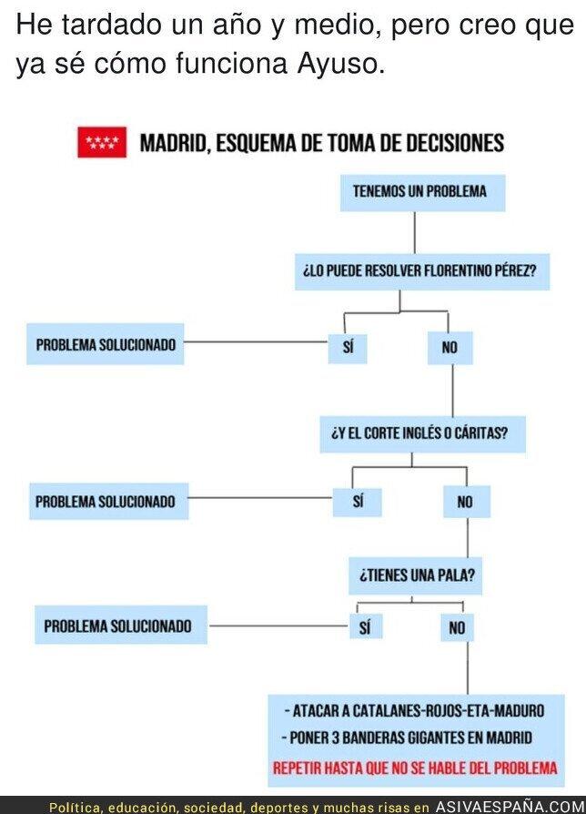 544242 - Las decisiones en Madrid