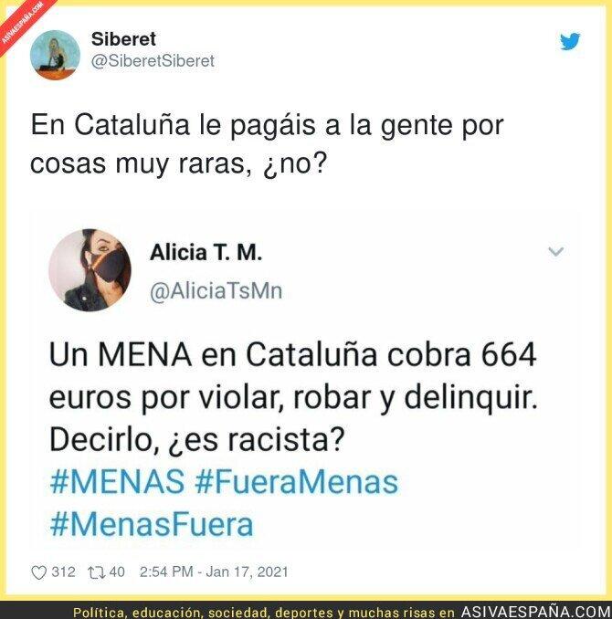 555715 - Las profesiones que hay en Catalunya según los fachas