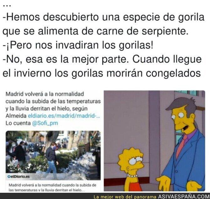 558546 - El plan genial de Madrid