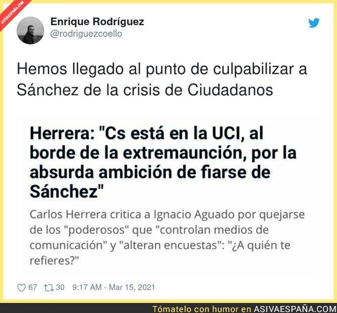 647317 - Todo es culpa de Pedro Sánchez