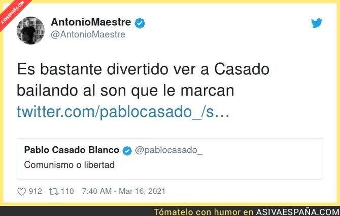 649560 - Pablo Casado es la irrelevancia hecha político