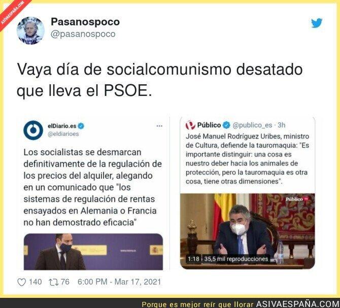 652446 - Que complicado es apoyar al PSOE desde hace años