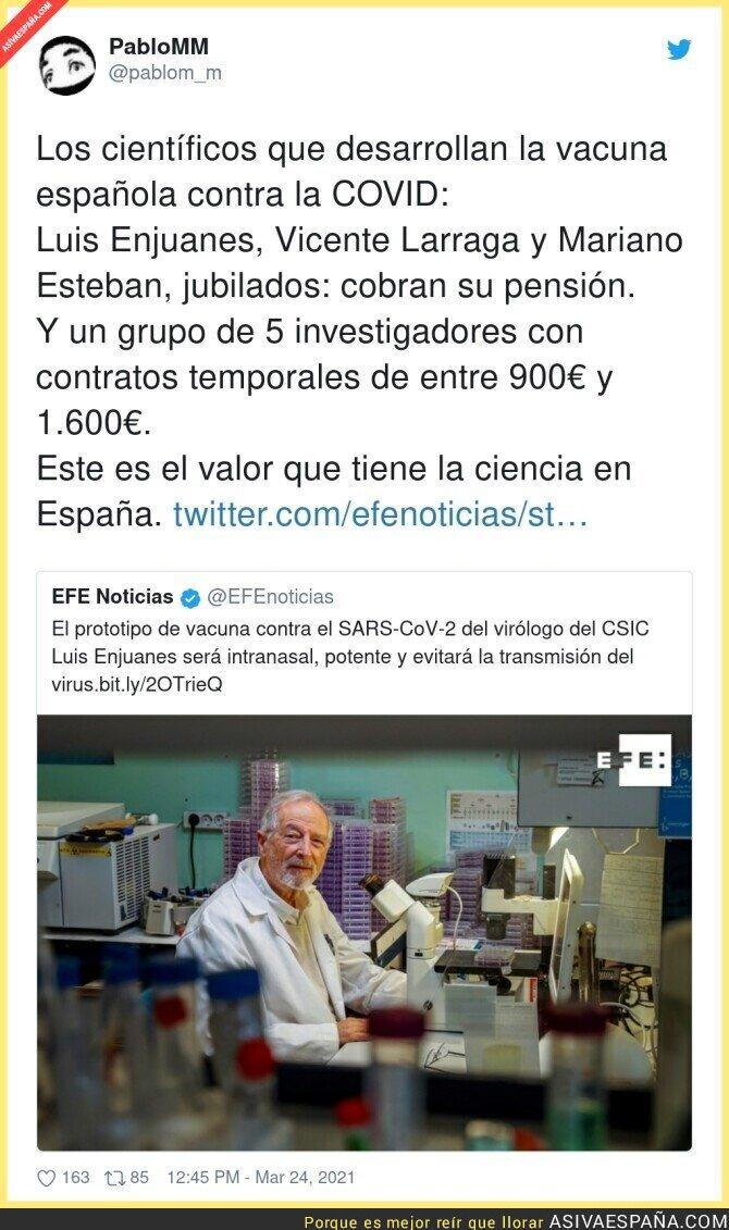 662500 - Así está la investigación en España