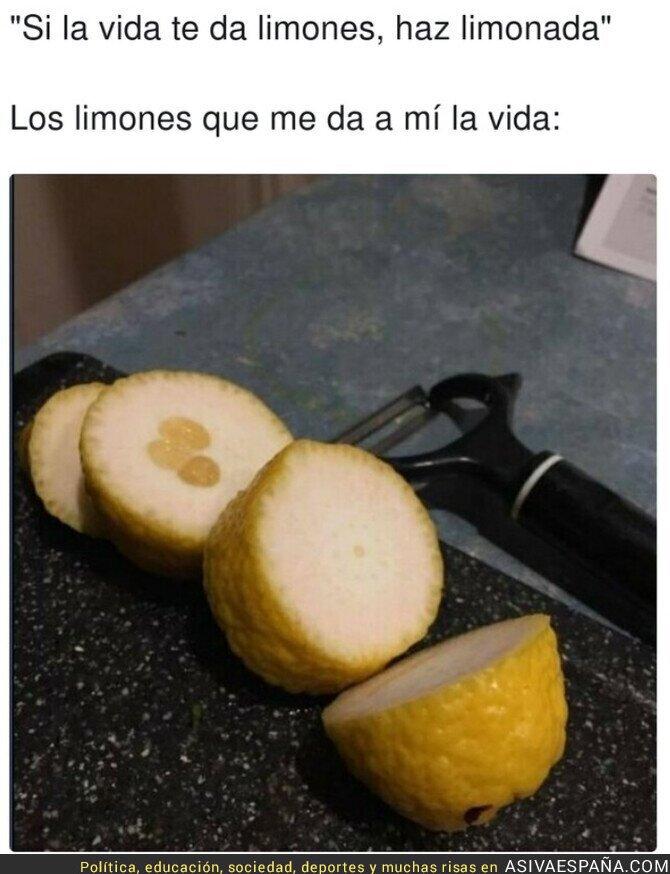 849155 - Se nota que no son limones de Murcia