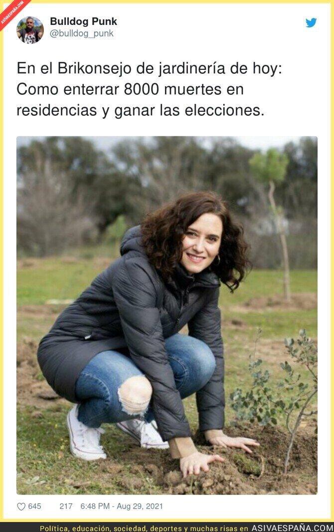 889876 - Isabel Díaz Ayuso tiene un truqui