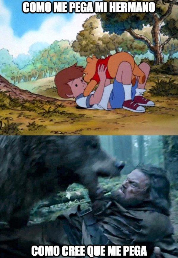 Bear_leo - Pelea de hermanos