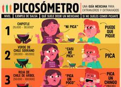 Enlace a Estúdiate esto antes de decidir que salsa tomarás en México