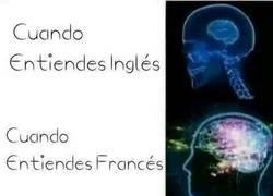 Enlace a Diferentes idiomas y su complicación para entenderlos