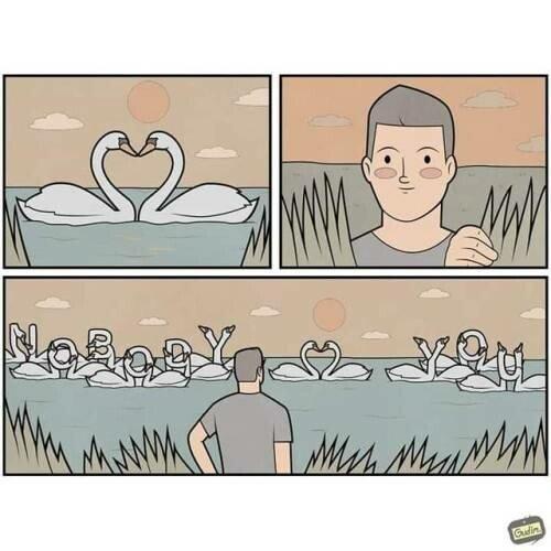 Otros - Cuando los cisnes te mandan un mensaje