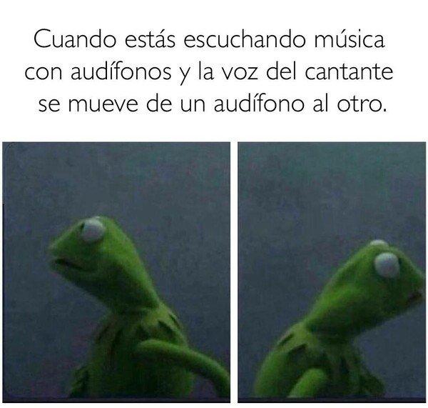 Meme_otros - Me tiene loco estas canciones