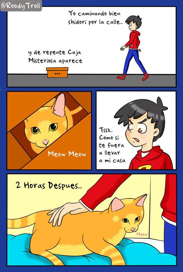 Vamo_a_calmarno - El poder de los gatos..