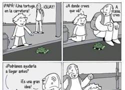 Enlace a Nunca ayudes a una tortuga