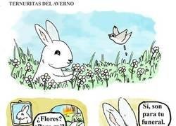 Enlace a Un conejo muy malvado