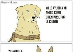 Enlace a La habilidad de cada perro