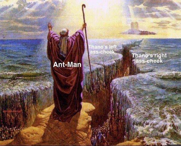 Meme_otros - Antman abriéndose paso