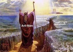 Enlace a Antman abriéndose paso