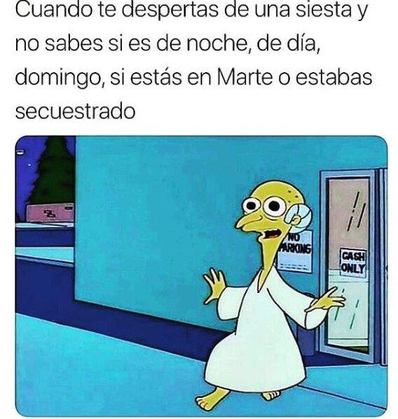 Meme_otros - Tardes a la española