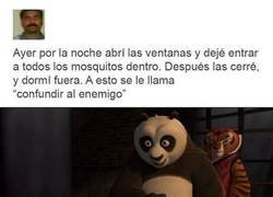 Enlace a Jaque mate mosquitos