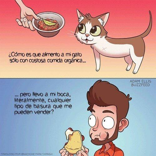 Otros - Cuidamos mejor a nuestras mascotas que a nosotros mismos