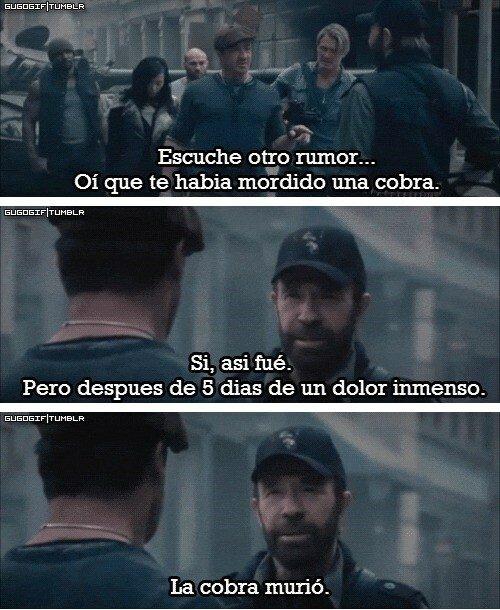 Meme_otros - Y es que nadie ose cruzarse con Chuck Norris