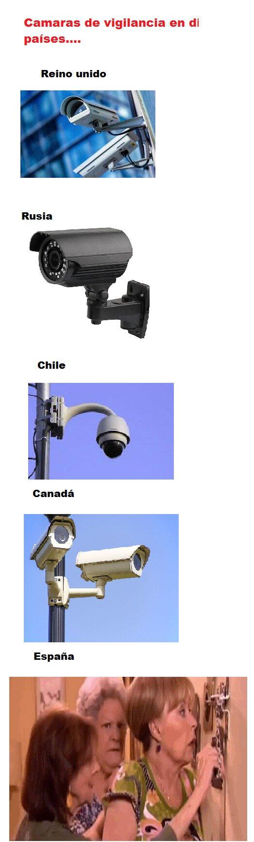The_observer - No hay mejores cámaras de vigilancia que ellas
