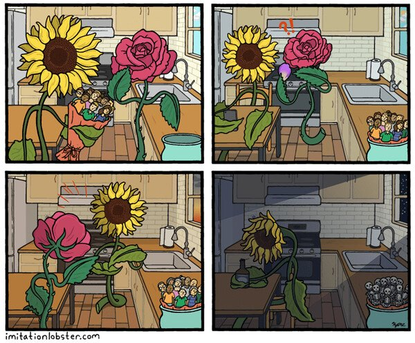 Otros - La vida de un girasol es muy triste