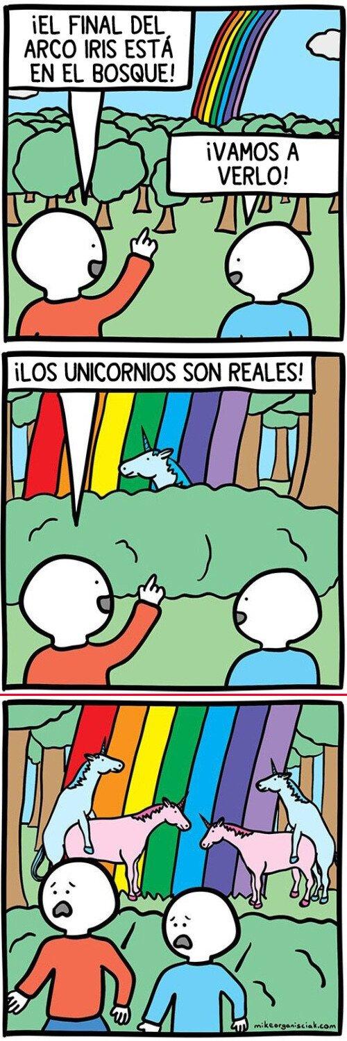 Otros - El mundo de los unicornios es muy loco