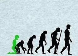 Enlace a La evolución humana tal como no la habías visto antes