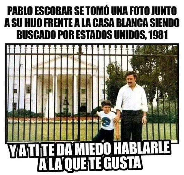 Meme_otros - Pablo Escobar se pasó la vida al completo