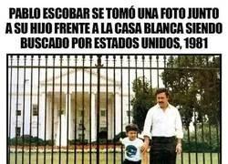 Enlace a Pablo Escobar se pasó la vida al completo