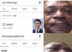 Enlace a Que poco le falta a Spiderman...