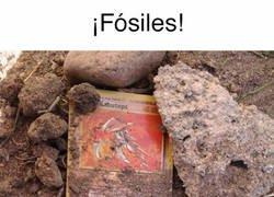 Enlace a He encontrado fósiles
