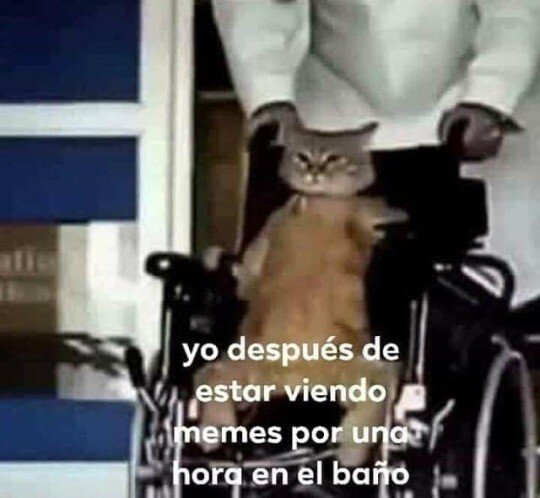 Meme_otros - Me quedé paralítico